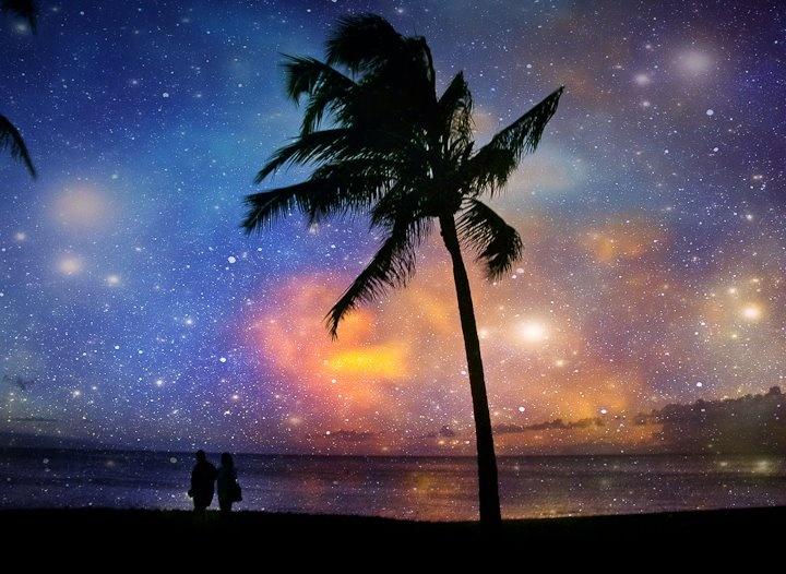 VIDA Leather Statement Clutch - Phoenix Palms-Pink Skies by VIDA UlM2mqY0zD