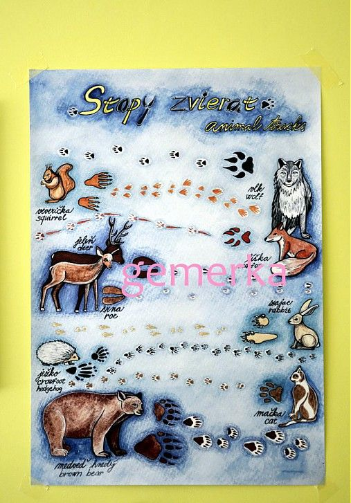 Stopy zvierat...plagát by gemerka - SAShE.sk - Handmade Grafika