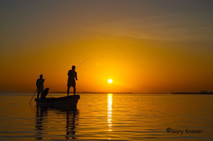 freshwater fishing in a boat - Google Search