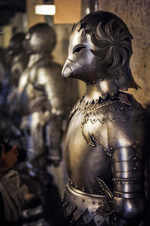 Bird armour on display in the Prague castle http://museum-of-artifacts.blogspot.com/