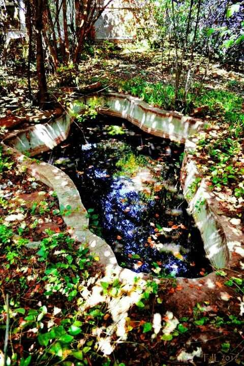 Mystical cross pond....