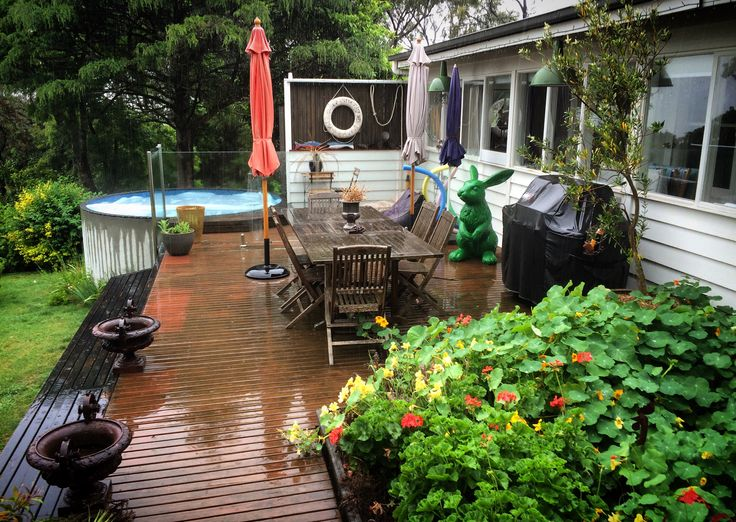 A rainy day on the deck with Pez the Green Rabbit.