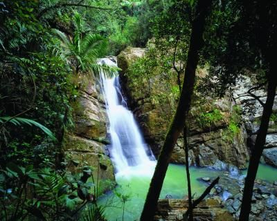 10 Reasons To Have A Destination Wedding in Puerto Rico 2. The sea isn't the only body of water. Swim in La Mina waterfall in El Yunque, the only U.S. tropical rainforest. Or kayak into Bioluminescent Bay in Fajardo, where tiny organisms ignite sparks when you stir the water.