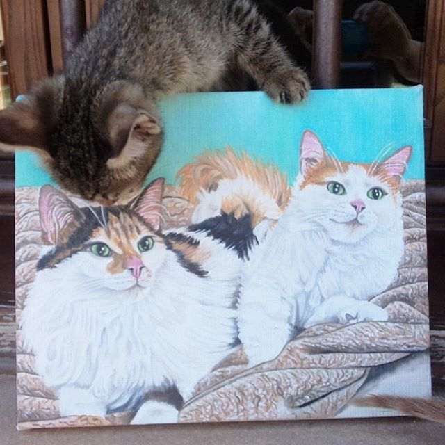 """54 Likes, 4 Comments - Christa (@oilpaintingschrista) on Instagram: """"Custom oeder 2 cats painting #oilpaintingschrista #oilpainting #cats #catoftheday #catlover…"""""""
