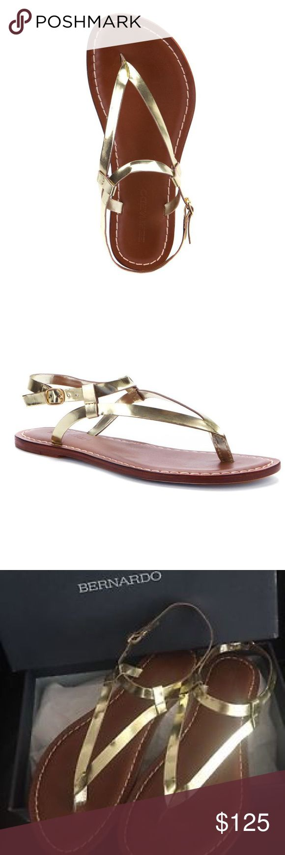 Bernardo Leather Sandals in Light Gold A lightly padded and leather-lined footbed cushions and supports atop a leather traction sole built for walking comfort. Bare your soul as well as your feet in the minimally designed Bernardo  flat sandal. With leather upper, ankle strap, buckle ankle, stitch details details, the Bernardo Sandals in Light Gold Specchio will keep you stylish and comfortable throughout your day. Bernardo Shoes Sandals