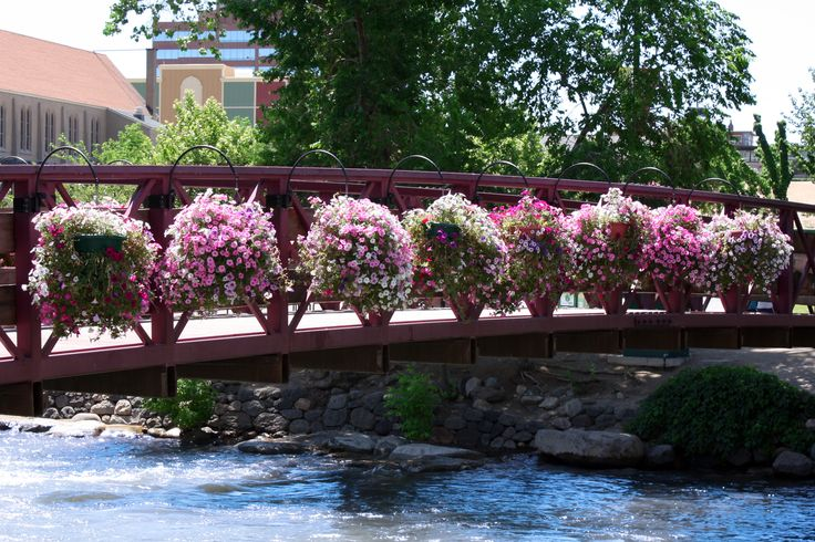 Hanging Flower Baskets Michaels : Best images about the truckee river on
