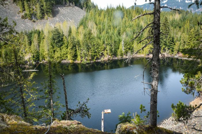 Take a Hike: Crater Rim Trail in Whistler Interpretive Forest