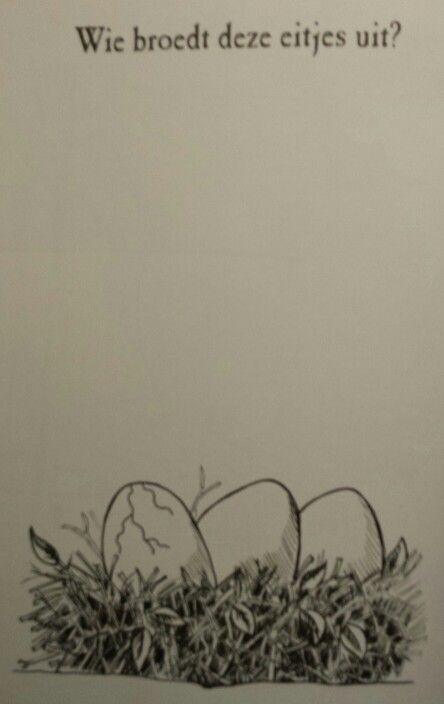 Tekenboek: eitjes