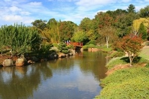 Toowoomba, Australia - Travel Guide