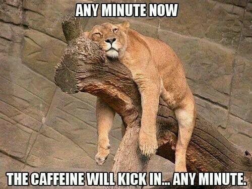 Any minute now, the caffeine will kick in....