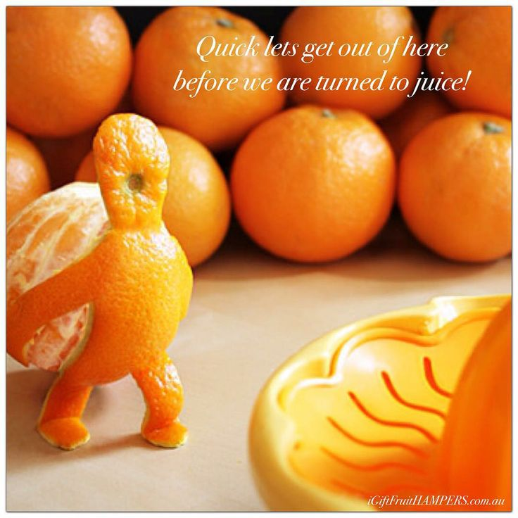 Quick lets get out of here before we are turned to juice! ;)#orange #oranges #food #fruit #love #quote #humour #funny #smile #fun #happy #cute #colorful #cool #colorful #cute #happy #fun #smile #funny #humour #quote #love #juice #carry #on #fruit #fruitporn #fruitjuice