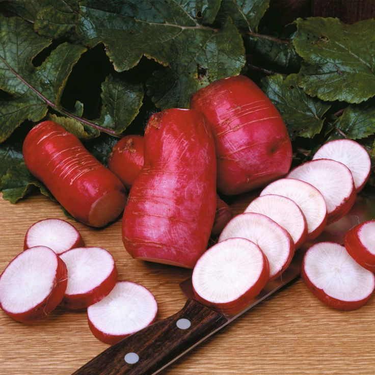 Radish Seeds - CHINA ROSE - Organic - Heirloom - Winter Vegetable - 100 Seeds  #theseedhouse