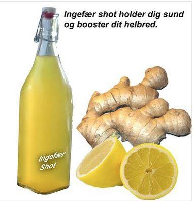 Ingefær Shot -booster kroppen. Anti-inflammatorisk drik. Ingredienser 2 liter vand 200 gram ingefær 2 Økologiske citroner 2 spsk. rørsukker (evt. 3-4 cm. gurkemejerod) Fremgangsmåde: Skræl ingefær og skær i skiver Skær hele citroner i skiver med skal på. Vand, ingefær, citroner, (evt. gurkemeje) og sukker koges i 45 minutter. Si og afkøl. Kom på flaske. Drik 2-4 cl. om dagen for at den anti-inflammatoriske effekt. Kan holde op en måned i køleskab.