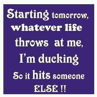 .: Thoughts, Laughing, Life, Ducks, Funny Stuff, Funny Quotes, Start Tomorrow, Smile, Inspiration Quotes
