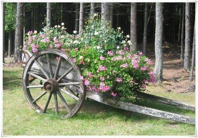 Old wagon with flowers
