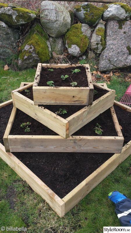 trädgård,odla,gör det själv,diy,do-it-yourself