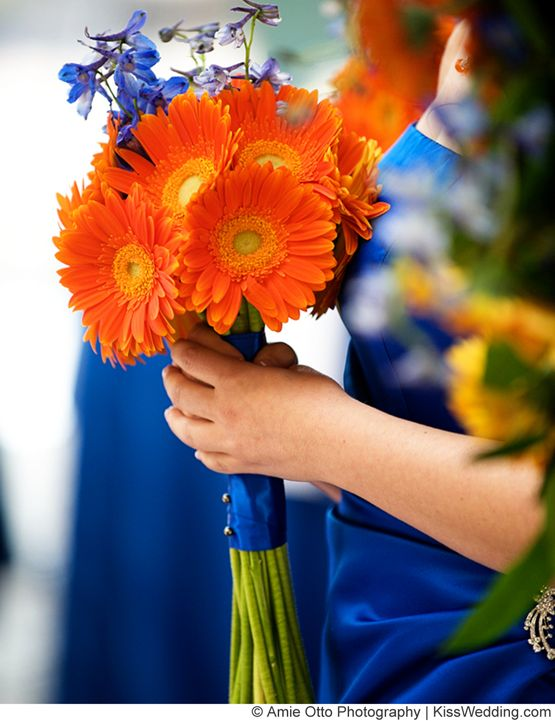A small, nosegay-type orange gerbera daisy wedding bouquet with bright blue flowers. Photo Copyright: Amie Otto Photography: