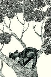 Roger la Borde | Petite Card by Thais Beltrame (GCN 030)