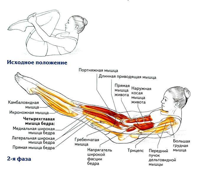 Картинки по запросу упражнения для задней поверхности бедра