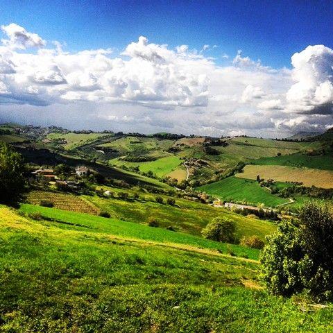 Acquaviva Picena - Hills