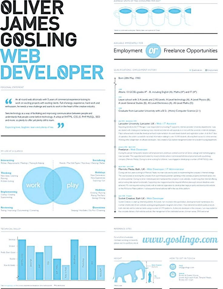 Resume For Web Developer