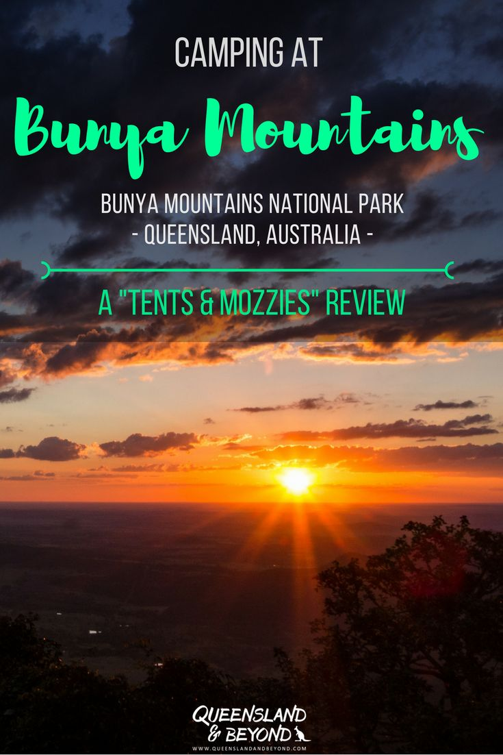 """Bunya Mountains National Park in southeast Queensland, Australia, make for a relaxing weekend away. But where should you camp? Here's my """"tents & mozzies"""" review of camping at the Dandabah campground at Bunya. 🌐 Queensland & Beyond #bunyamountains #queensland #camping #australia #nationalpark"""