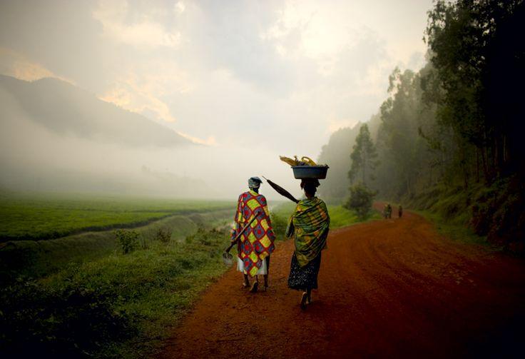 Rwanda Tea Fields; I remember it just like this! Missing it already