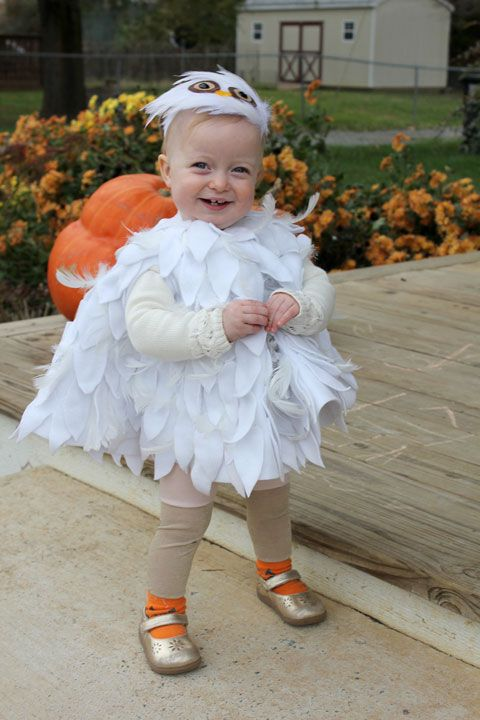 Best 25 hedwig costume ideas on pinterest harry potter baby crozette hedwig baby owl no sew diy costume solutioingenieria Images