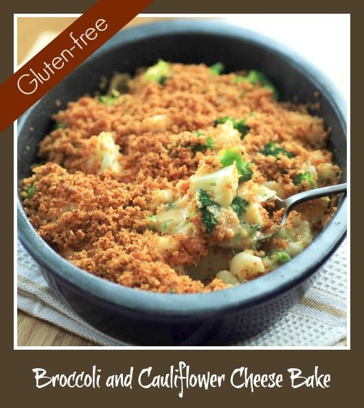 Broccoli and Cauliflower Cheese Bake by Noshing with the Nolands