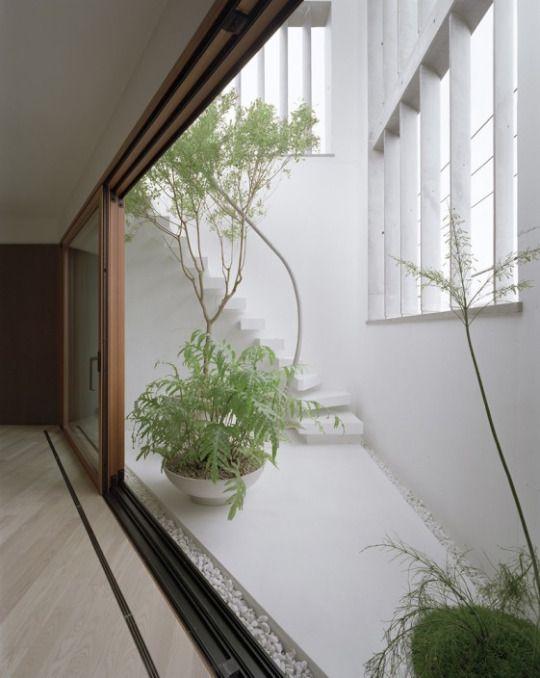 Jun Aoki & Associates. m House. Tokyo. Japan. photo Yasushi Ichikawa