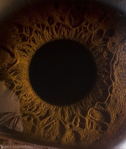 This is a human eye close up,