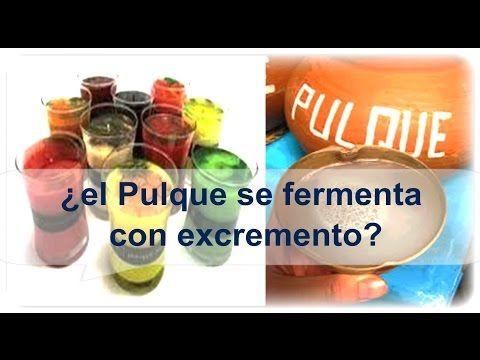 Pulque Mexicano, se fermenta o no con excremento, mito o realidad, te dire