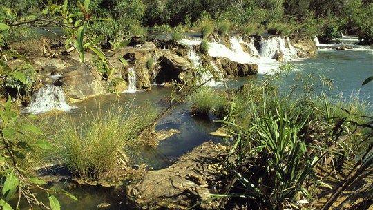 Flora River Nature Park - Katherine Area - Northern Territory