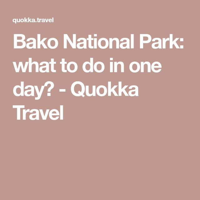 Bako National Park: what to do in one day? - Quokka Travel