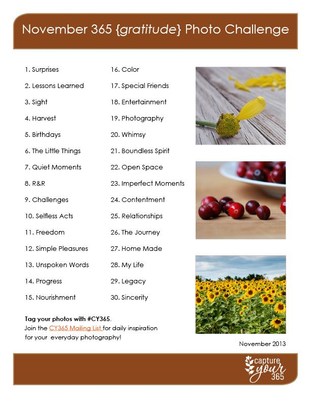November Capture Your 365 {Gratitude} Photo Challenge List with free daily email  with photo ideas for each prompt