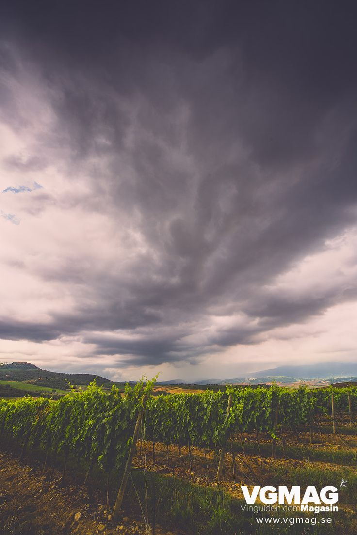 Thunderstorms over Val d´Orcia and the wineyards of Col d´Orcia