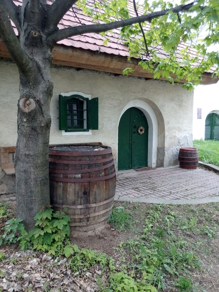 Tök, old wine cellar.