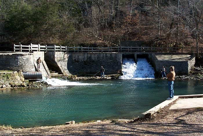 41 best images about roaring river peace and joy on for Roaring river fish hatchery