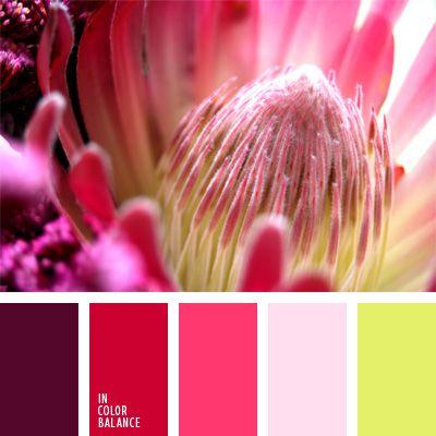 color fucsia y tonos rosados, color verde fresco, color verde lechuga, colores…                                                                                                                                                     Más