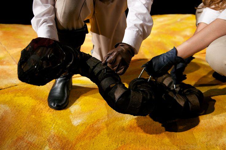 The Little Prince October 2013  Costume Designer - Kelsey Henderson Set Designer - Shane Thompson Director - Angus Templeton  Photo of Snake Puppet  Photo Credit - Amy Dwight khendersondesign.com