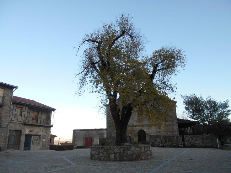 Villanueva del Conde. Plaza del pueblo resultado de la suma de dos espacios: Plaza de la Iglesia y Plaza de las Eras.