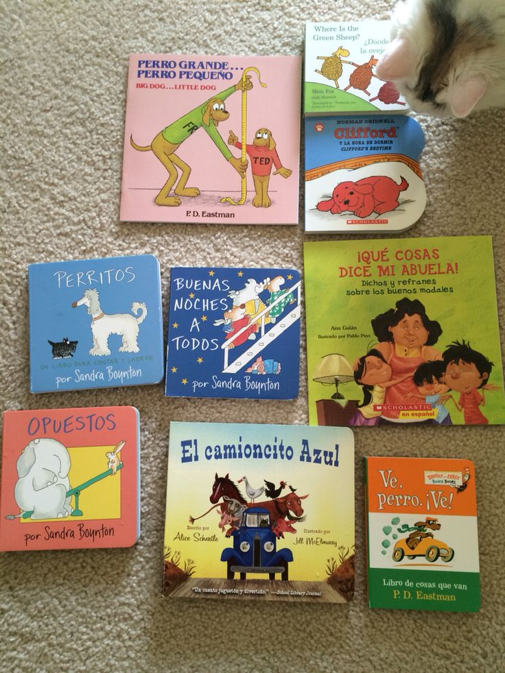 Spanish and Spanish-English children's books