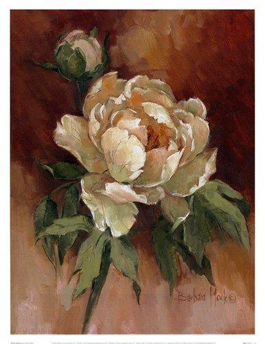 White Peonies II by Barbara Mock