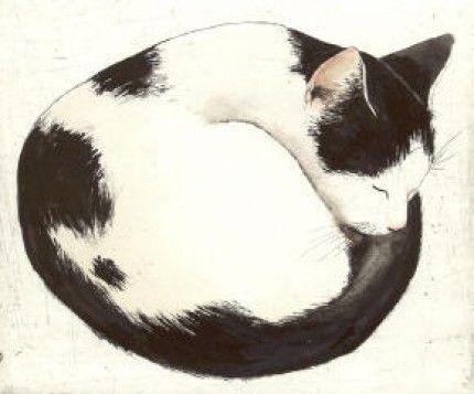 Kay Mcdonagh - Lulu #cat #black #white