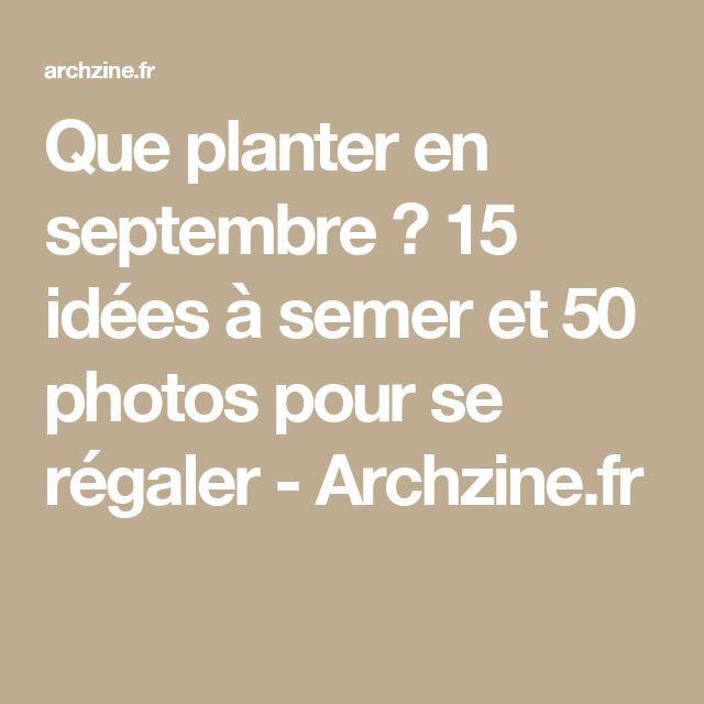 Que planter en septembre ? 15 idées à semer et 50 photos pour se régaler - Archzine.fr