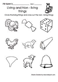 living and nonliving things worksheets for first grade - Google Search