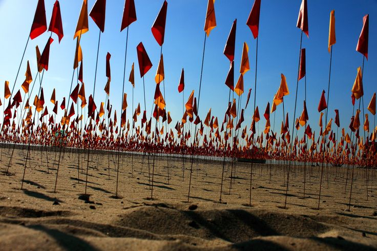 The Flags, Sculpture by the Sea, #Bondi
