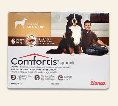 Is Comfortis Safe For Small Dogs