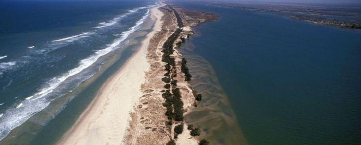 Parques Naturales del Atlántico y País Bassari.  – Salidas semanales hasta OCT