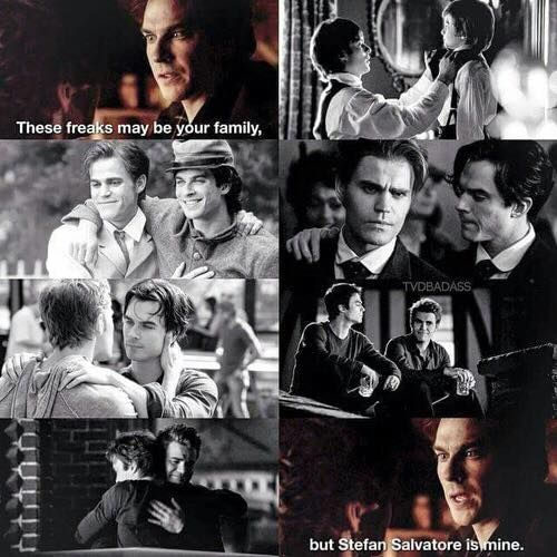 "#TVD The Vampire Diaries ""Those freaks may be your family, but Stefan Salvatore is mine."" Damon Salvatore :')"